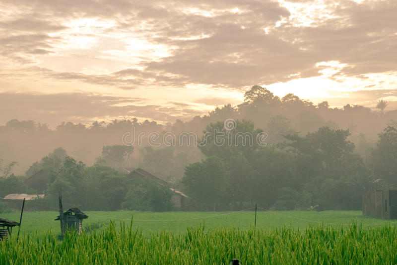 Small Village in Indonesia. Early morning at small village in jepara indonesia royalty free stock photos