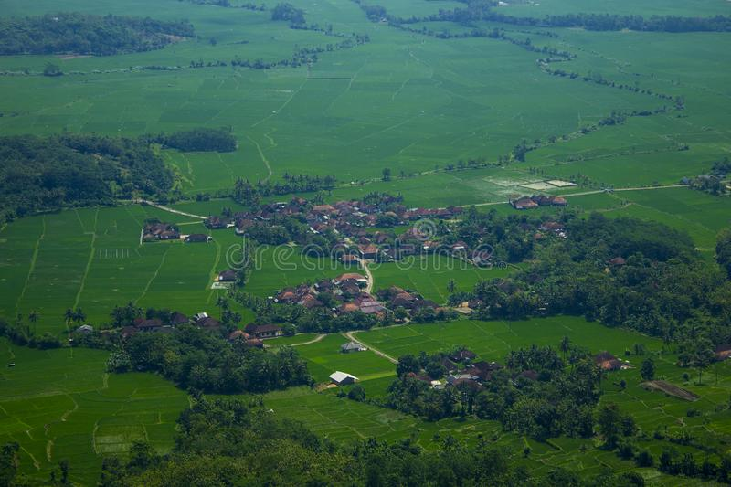 A Small Village in the middle of Rice Fields royalty free stock photos