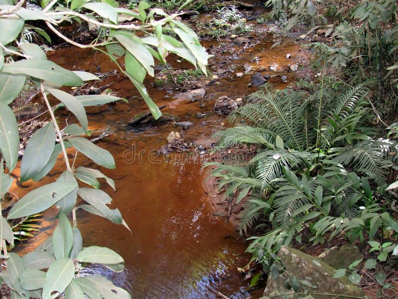 Small watercourse. A small stream of natural water, more or less torrential, flowing from a higher part to a lower one and flowing into another river, the sea or royalty free stock photo