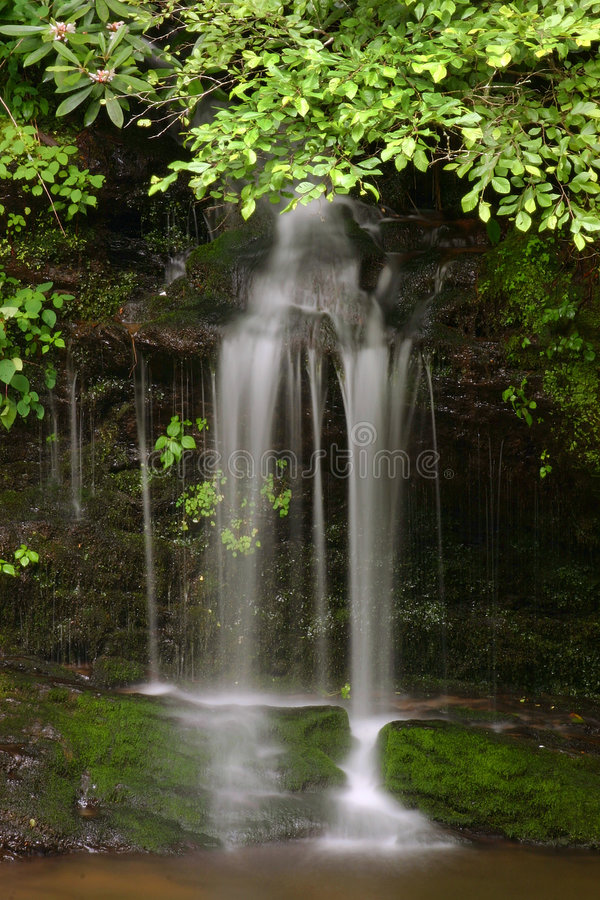 Download Small waterfall stock photo. Image of mountains, tennessee - 202758