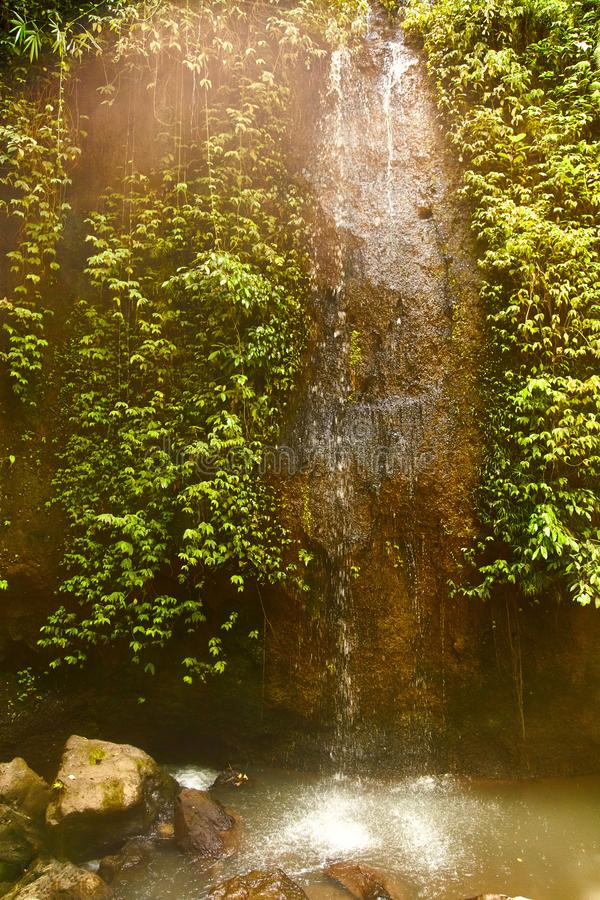 Small waterfall in a forest in Bali, Indonesia with a mini waterfall. stock photography