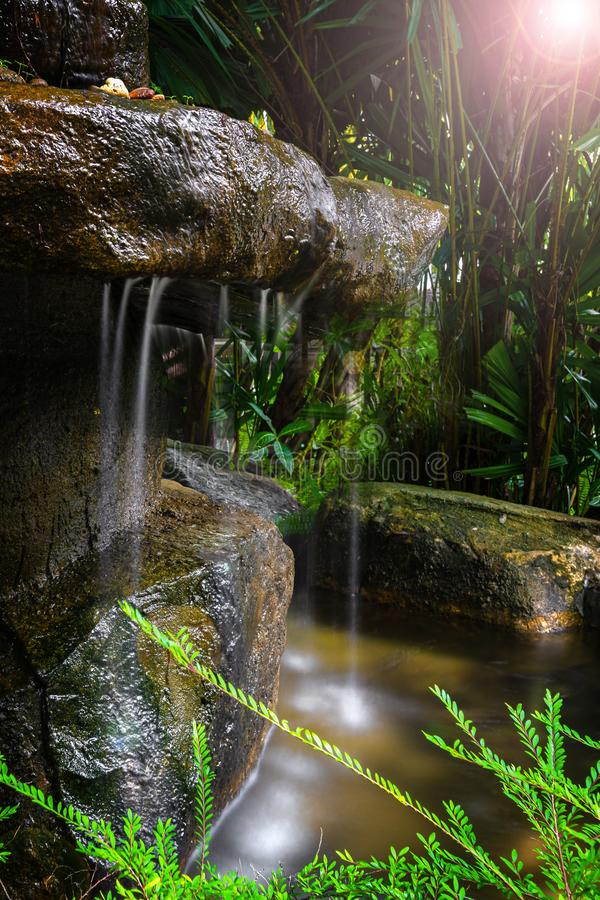 A small waterfall in the forest and jungle, hidden among the plants, darkness and little sun. shooting with long stock images