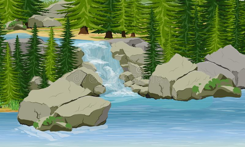 Small waterfall in the forest. Lake, large stones, spruce trees vector illustration