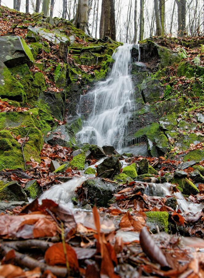 Free Small Waterfall In Forest. Water Flows Over Mossy Stones. Long Exposure Time Makes Motion Blur. Autumn Landscape, Czech Republic. Royalty Free Stock Photo - 187497365