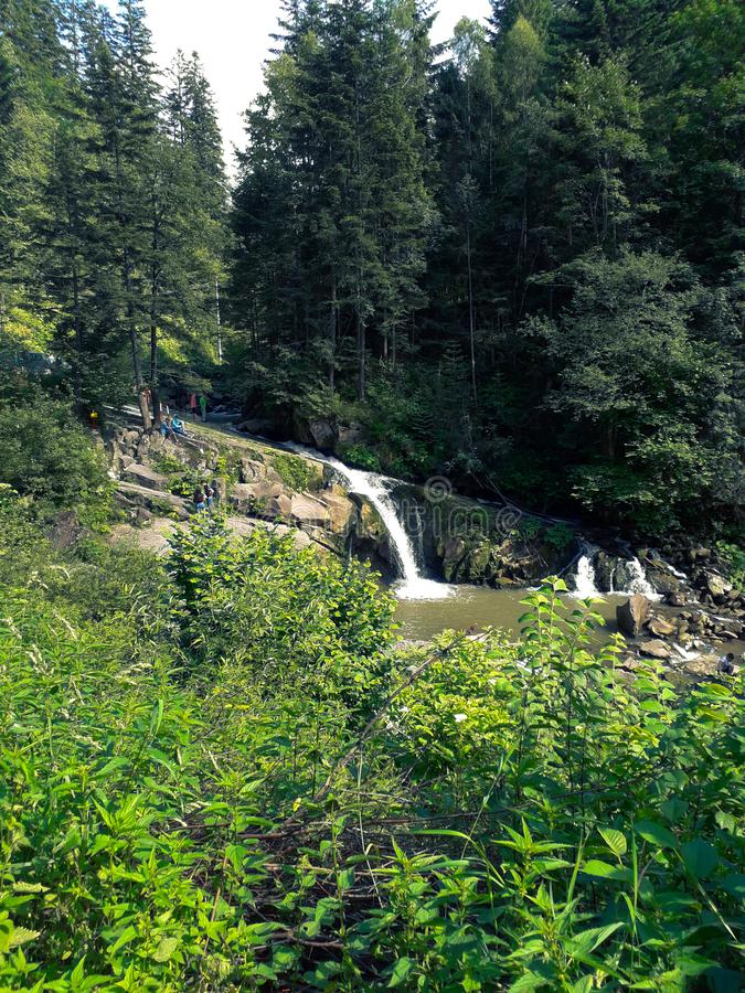 A small waterfall in the middle of a forest in the mountains. Picturesque landscape with a waterfall in the mountains.  Carpathian mountains.  Ukraine. Forest stock photography