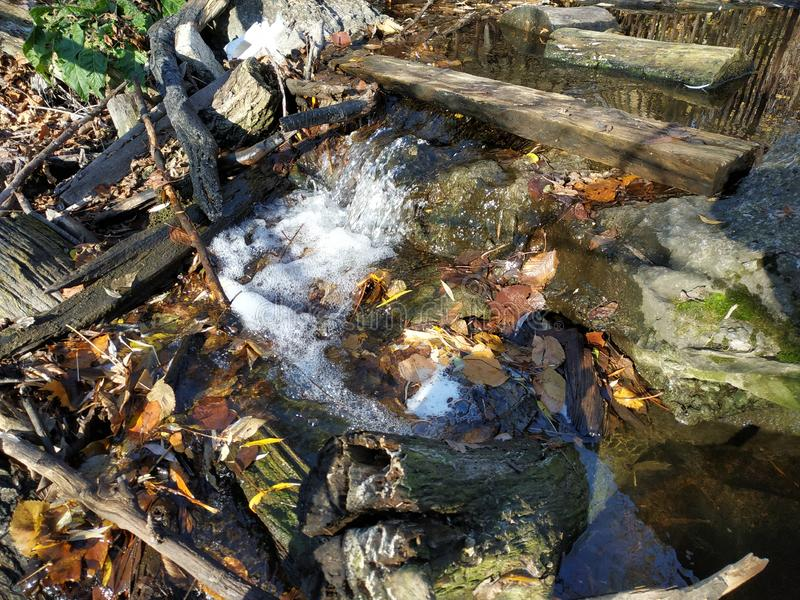 A small waterfall. Nature in the park. Water. A small threshold. A stream runs among foliage, stones, sticks. Water in the park. U. Rban nature stock photography