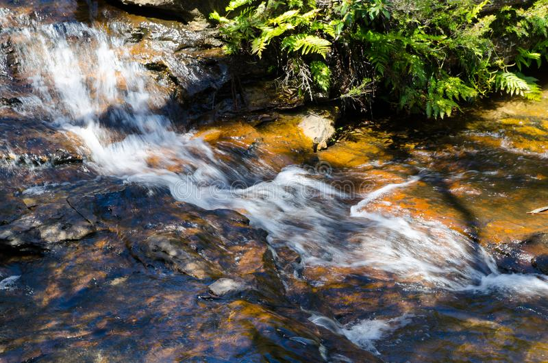 Small waterfall in the rainforest at Wentworth Falls, New South Wales, Australia. stock photos