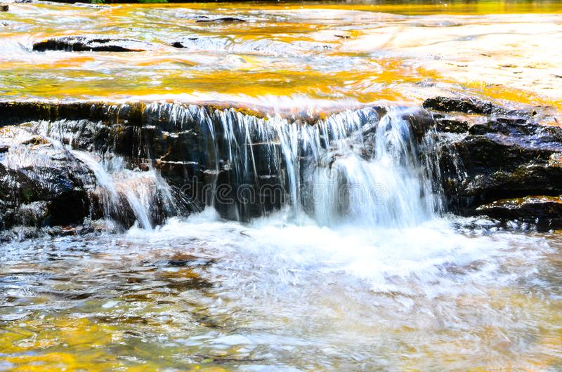 Small waterfall in the rainforest at Wentworth Falls, New South Wales, Australia. royalty free stock images