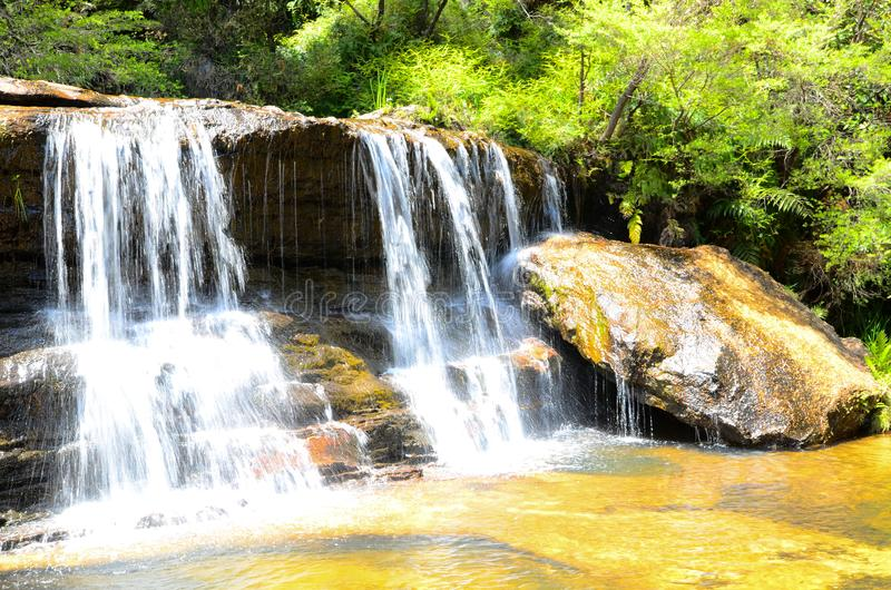 Small waterfall in the rainforest at Wentworth Falls, New South Wales, Australia. royalty free stock image