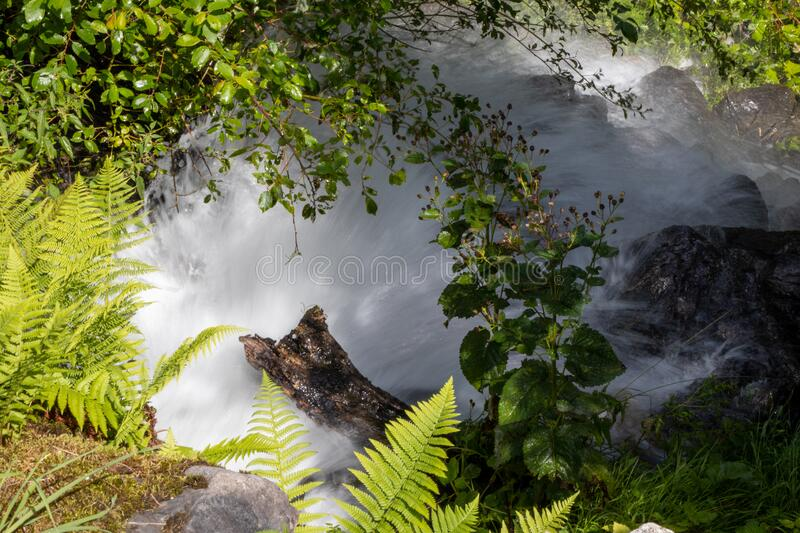 Waterfall between stones and wood. A small waterfall between stones, wood and leaves stock images