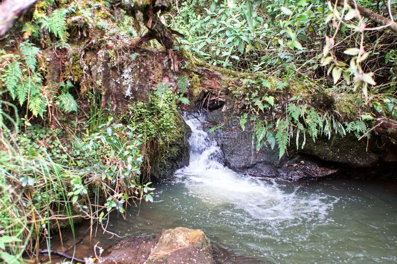 Small waterfall on a stream royalty free stock photography