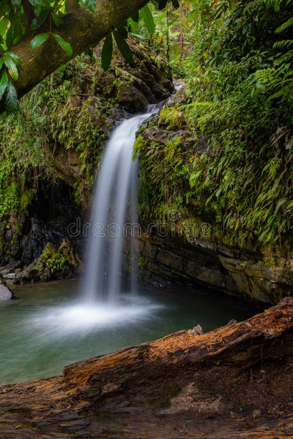 Juan Diego Falls royalty free stock photography
