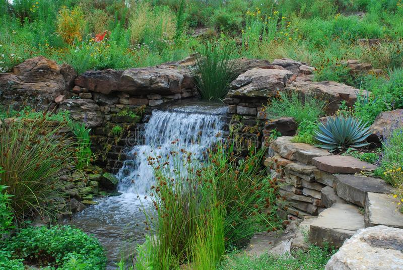 Small waterfall surrounded by Texas native plants royalty free stock image