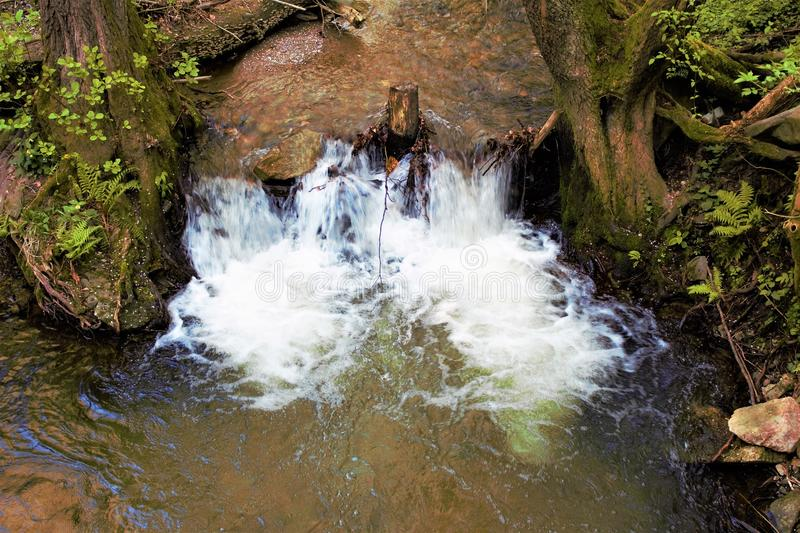 Small waterfall in between the trees stock photo