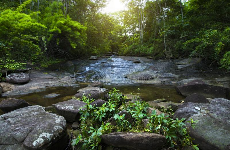 Small waterfall in tropical forest, Streams of water are pouring royalty free stock photography