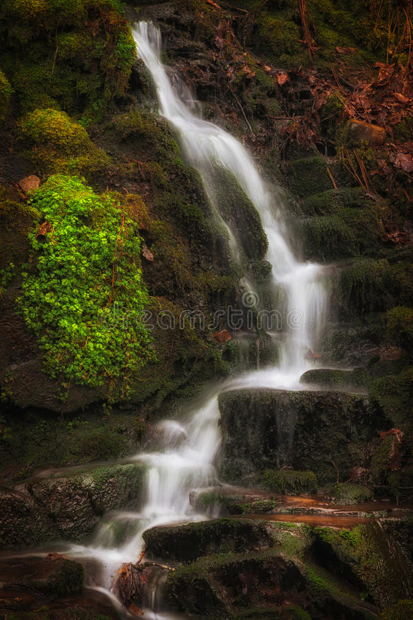 Small waterfalls at Melincourt Brook. Lush greens, Autumn leaves and waterfalls at Melincourt Brook in Resolven, South Wales royalty free stock images