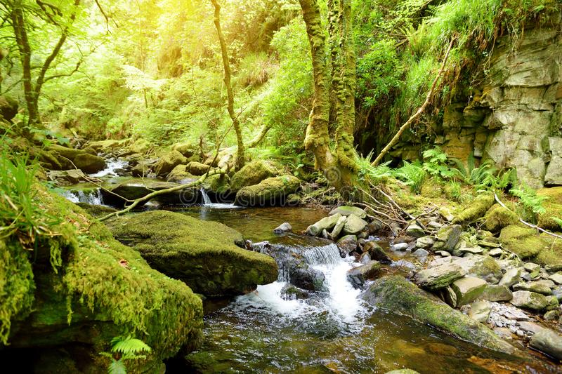 Small waterfalls near Torc Waterfall, one of most well known tourist attractions in Ireland, located in Killarney National Park, I royalty free stock photography