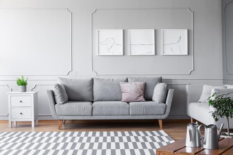 Small white commode with green plant in grey pot on to of it next to comfortable couch with pillows in scandinavian living room, r stock photography