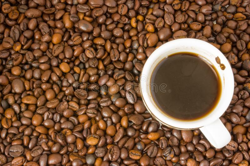 Small white cup of brewed coffee with steam above it standing on a background of scattered brown roasted coffee beans. Top view stock photo