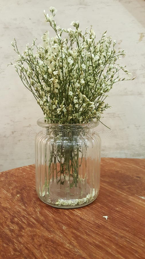 Small white flowers in clear glass vase on wood table stock image download small white flowers in clear glass vase on wood table stock image image of mightylinksfo
