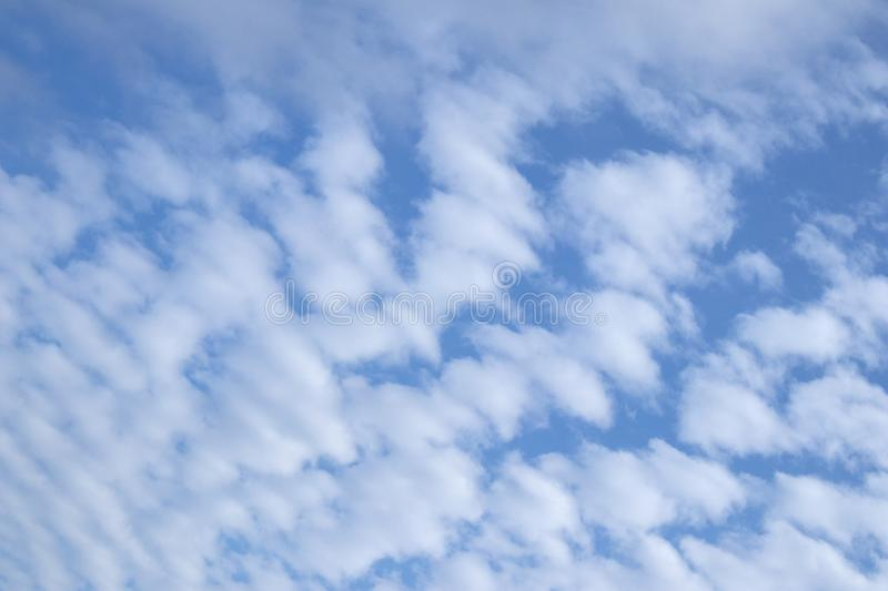 Small white fluffy clouds against a blue sky. Lines of small white fluffy clouds against a blue sky royalty free stock photo