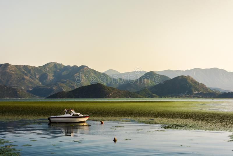 Small white yacht in front of a carpet of water lilies in Shkoder Lake surrounded by a mountain range, Montenegro. Europe stock photos