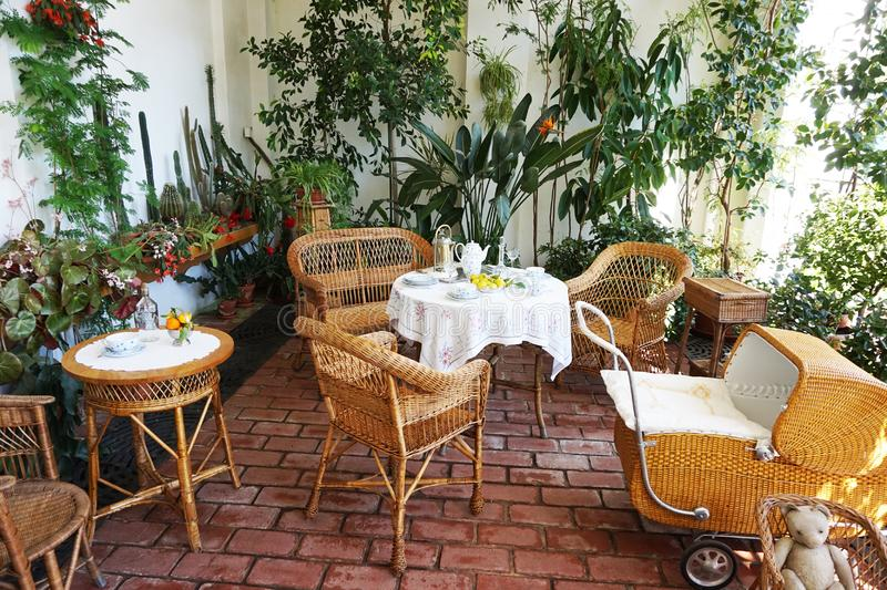 small winter garden with tropical plants stock photography