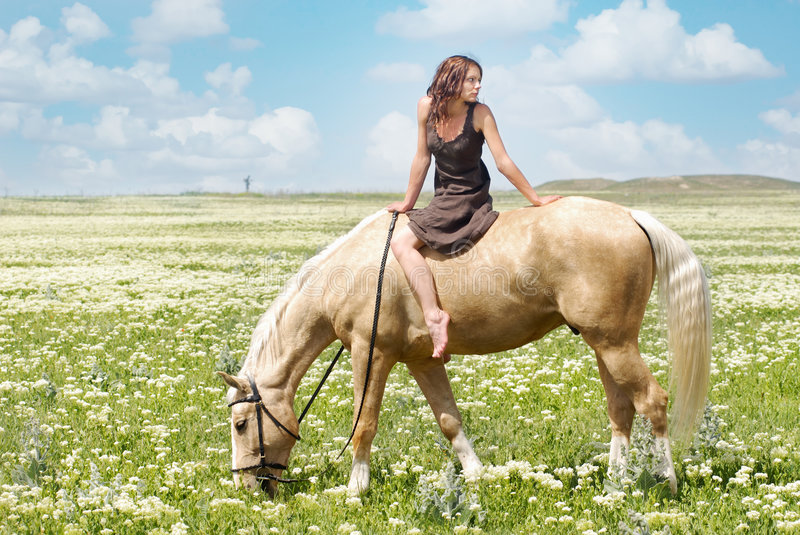 Small woman on a big horse. Photo of the small woman on a big horse in summer field royalty free stock photos