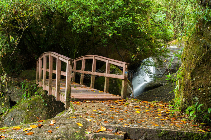 Small wood bridge in rain forest with waterfall. In background royalty free stock photography