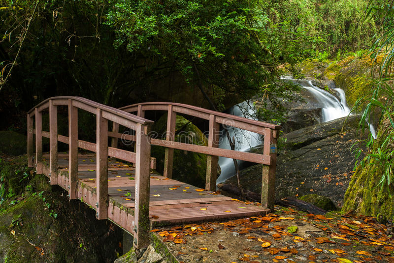 Small wood bridge in rain forest with waterfall. In background royalty free stock images