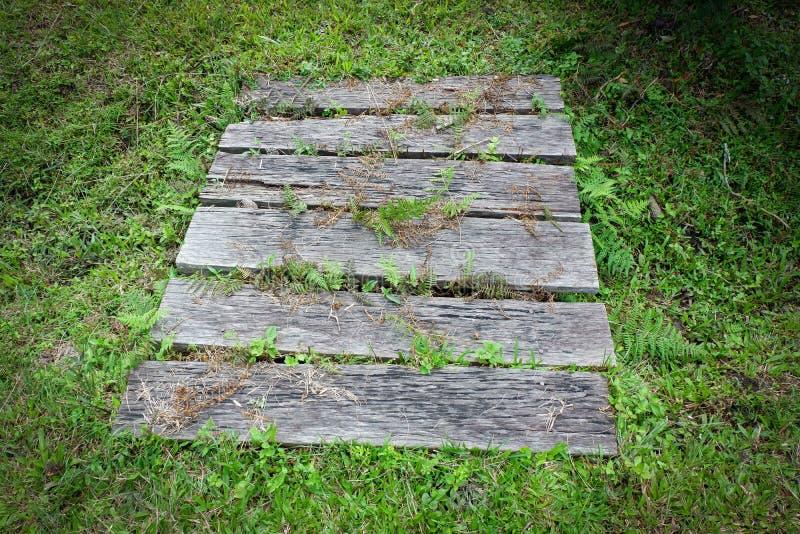 Small wood bridge. Grass floor stock photos