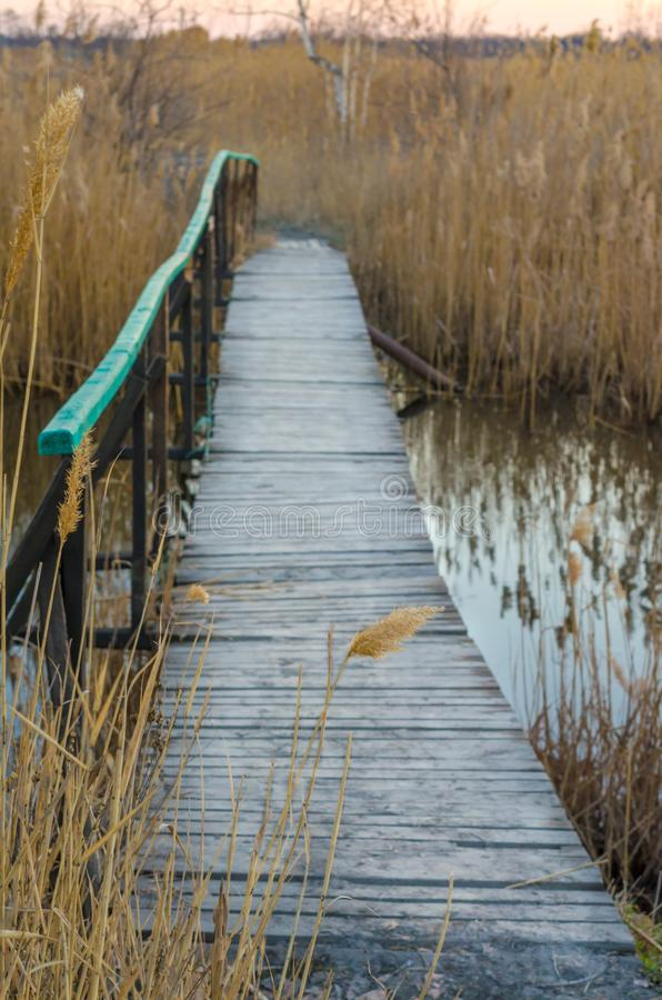 A small wooden bridge over a small river. Wooden bridge over the river stock image