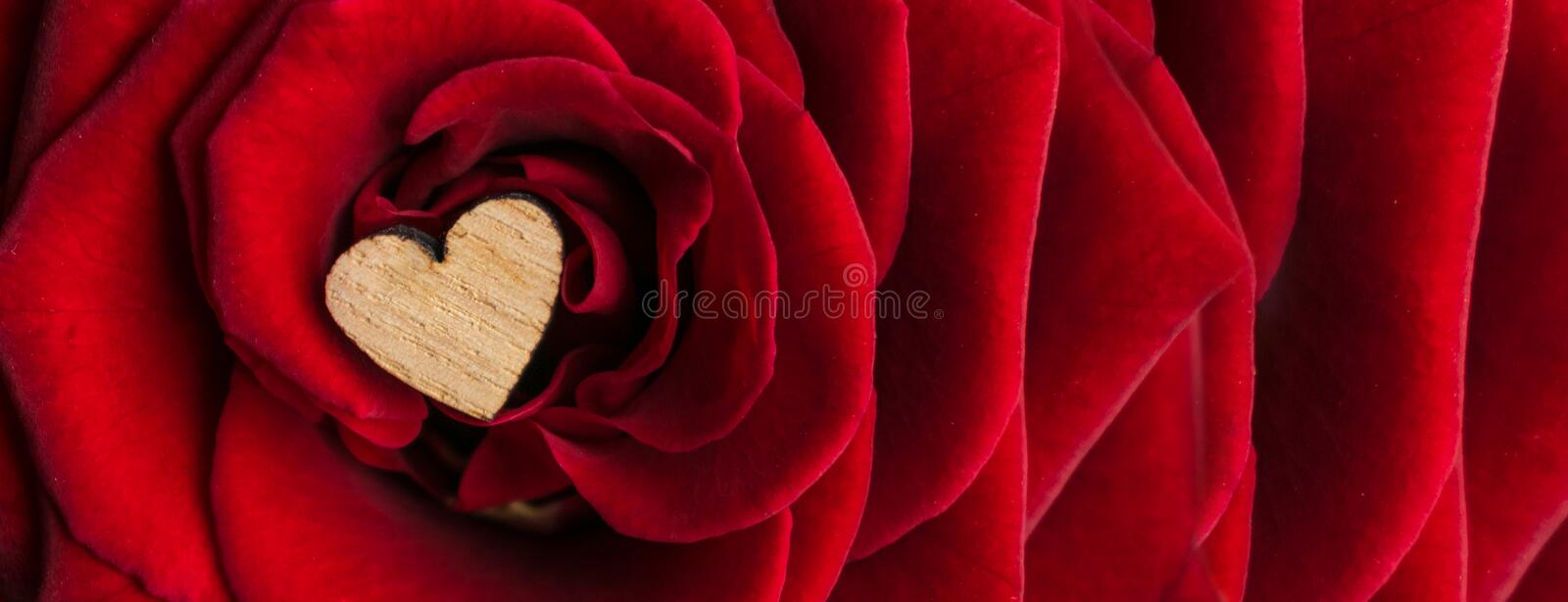 A small wooden heart in the middle of the petals of a luxurious red velvet rose. Elegant deluxe red rose banner background with a stock photos