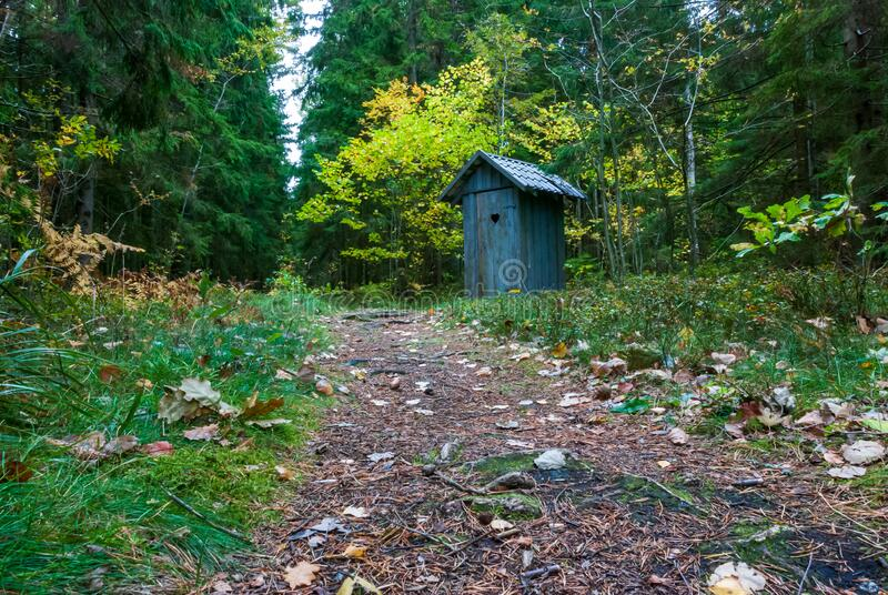 Small wooden hearth toilet in gray color. Small wooden hearth toilet in a dark green forest thicket with fallen leaves on a forest path royalty free stock photo