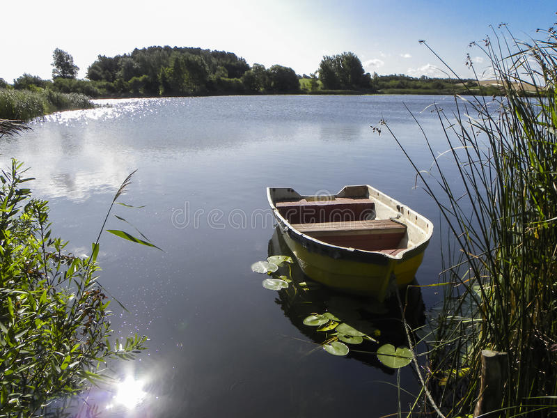 Small wooden rowing boat on pond in sunshine. Small wooden rowing boat on pond between reeds and surrounded by waterlily leaves in sunshine reflecting on the stock images