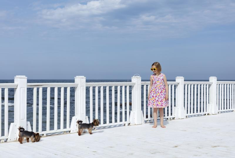 Small 8 years old pretty cheerful girl in a dress with a floral print and in yellow sunglasses stands with little dogs on a stock images