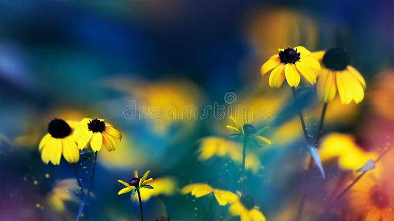Small yellow bright summer flowers on a background of blue and green foliage in a fairy garden. Macro artistic image. stock image