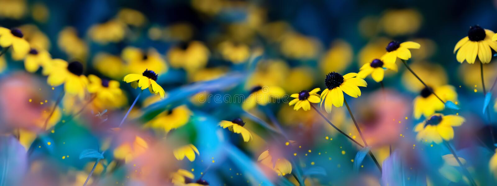 Small yellow bright summer flowers on a background of blue and green foliage in a fairy garden. Macro artistic image. royalty free stock photos