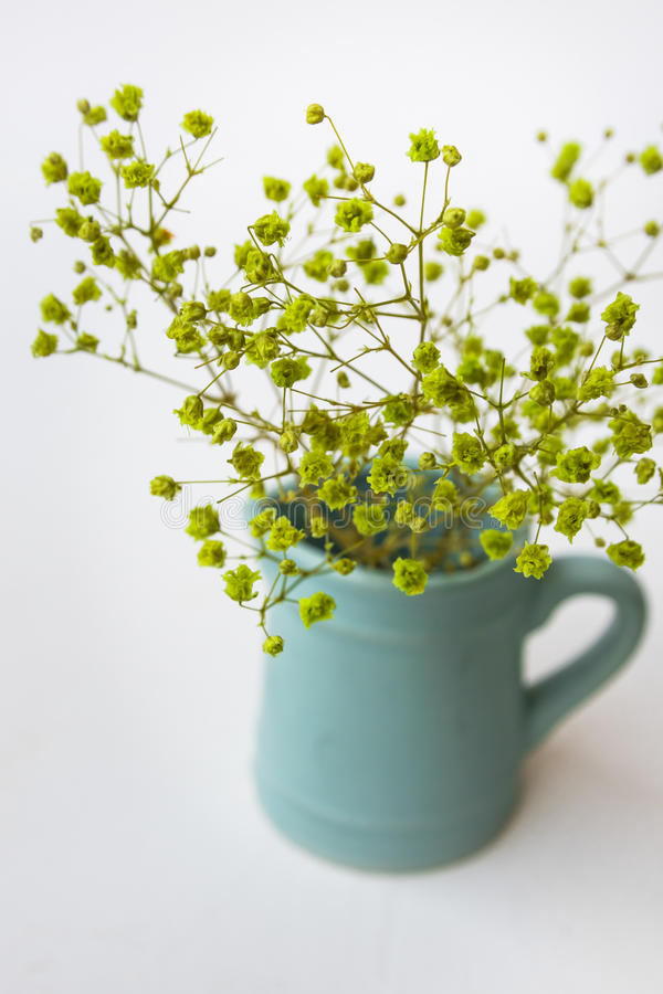 Small yellow green flowers in blue pitcher or jug on white background, top view, pastel colors, minimalist clean style. For blogging, social media, hero image stock photos