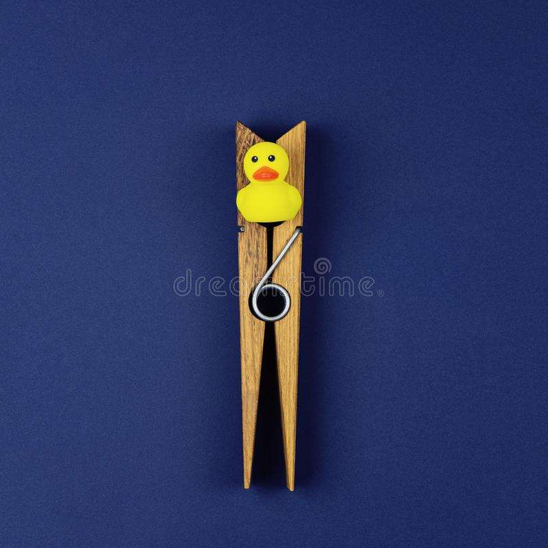 Small yellow rubber duck and a large wooden clothespin. Small yellow rubber duck and large wooden clothespin on blue background. Incarceration and infringement stock image