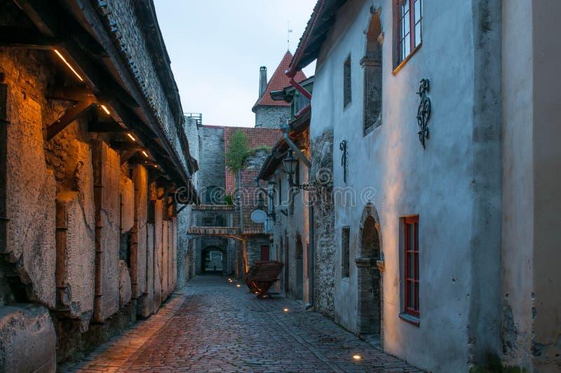 Smalle kasteelstraat, Tallinn, Estland stock foto
