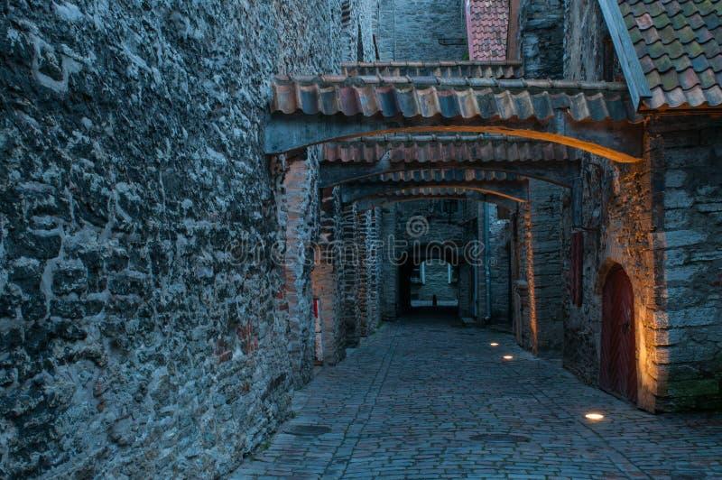 Smalle kasteelstraat, Tallinn, Estland royalty-vrije stock foto's
