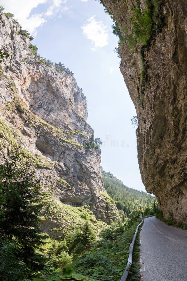 Smalle motorweg in de kloof van de Rhodope-Bergen, Bulgari stock fotografie