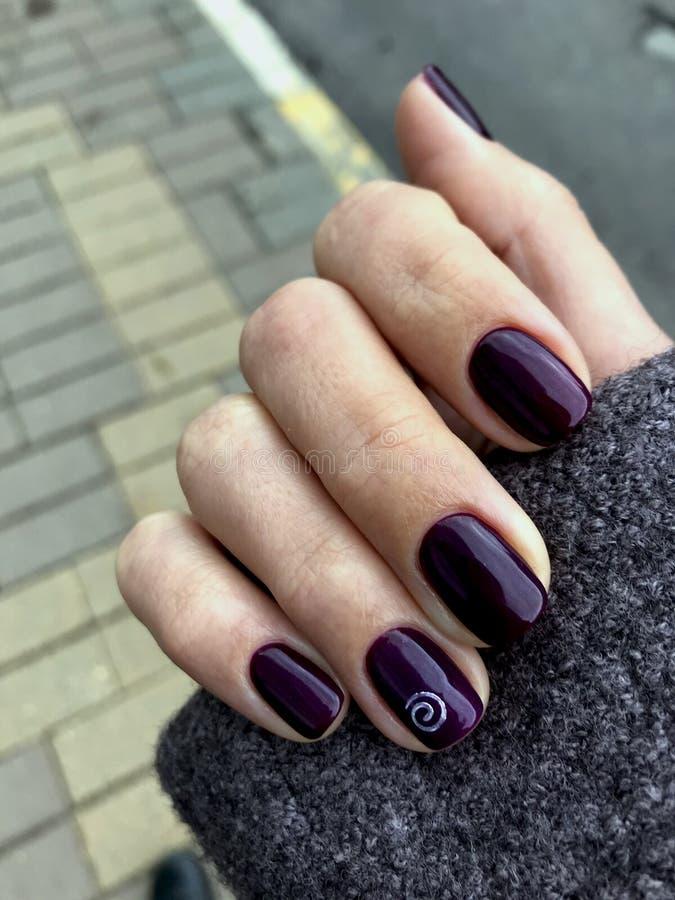 Smalto di Borgogna Manicure su una mano femminile Chiodi del melograno fotografia stock