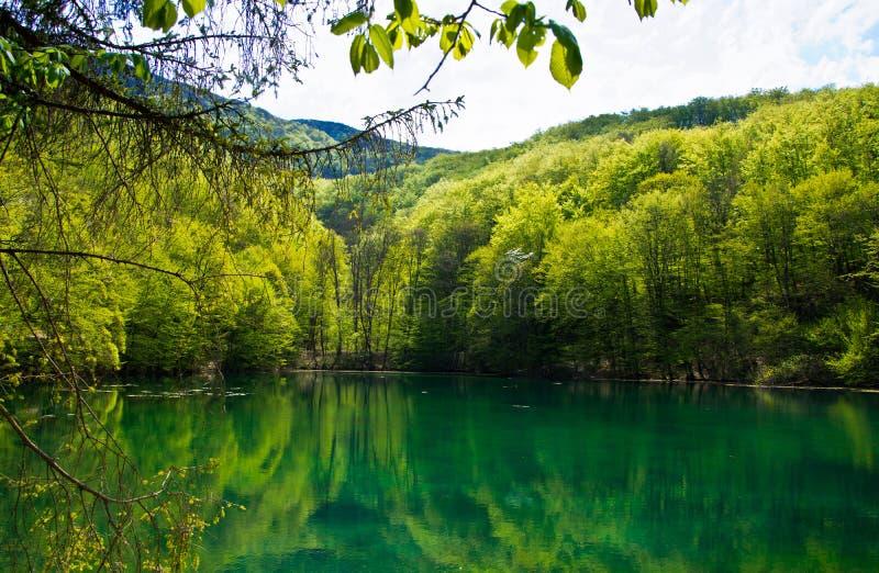 Smaragdgroen Meer royalty-vrije stock afbeelding