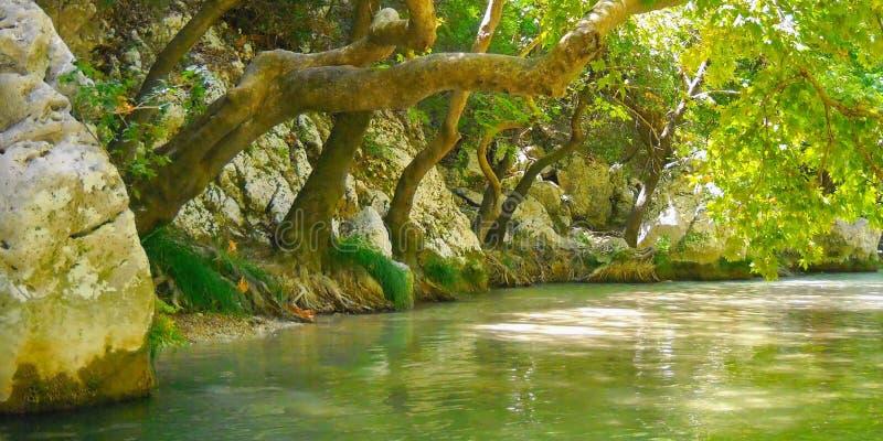 Smaragdgroene kleur van Acheron-rivier stock afbeeldingen