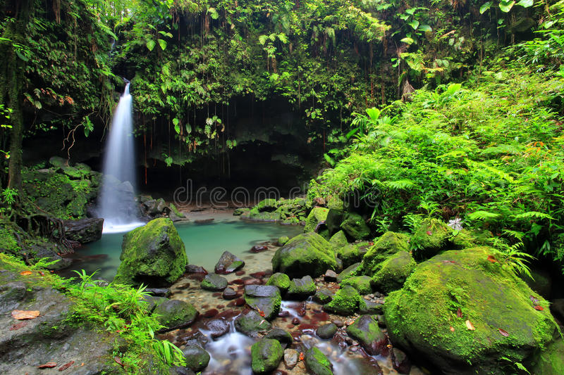Smaragdgroene Pool, Dominica royalty-vrije stock foto's