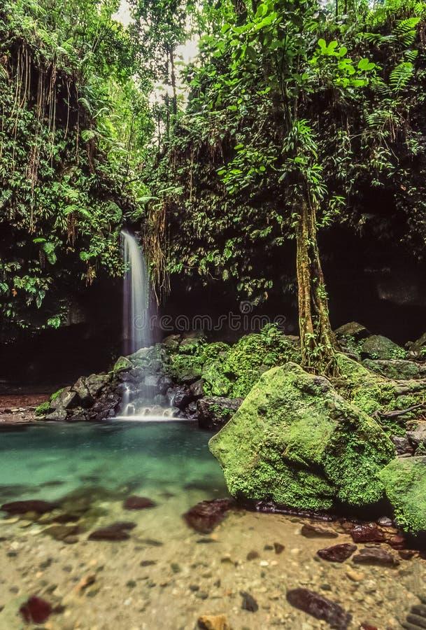 Smaragdgroene pool op Dominica royalty-vrije stock afbeeldingen