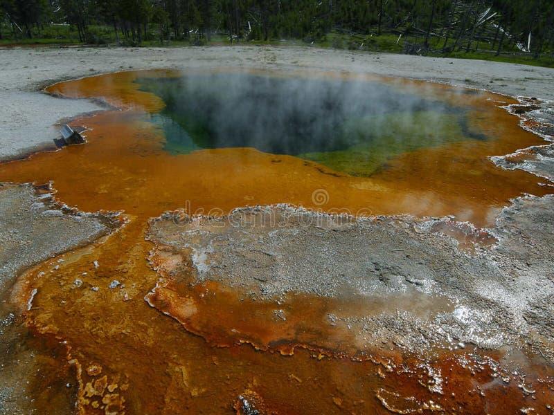 Smaragdgroene Pool in Yellowstone royalty-vrije stock foto's