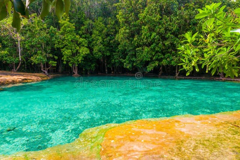 smaragdpölen lokaliseras i djunglerna av Krabi i Thailand arkivbild
